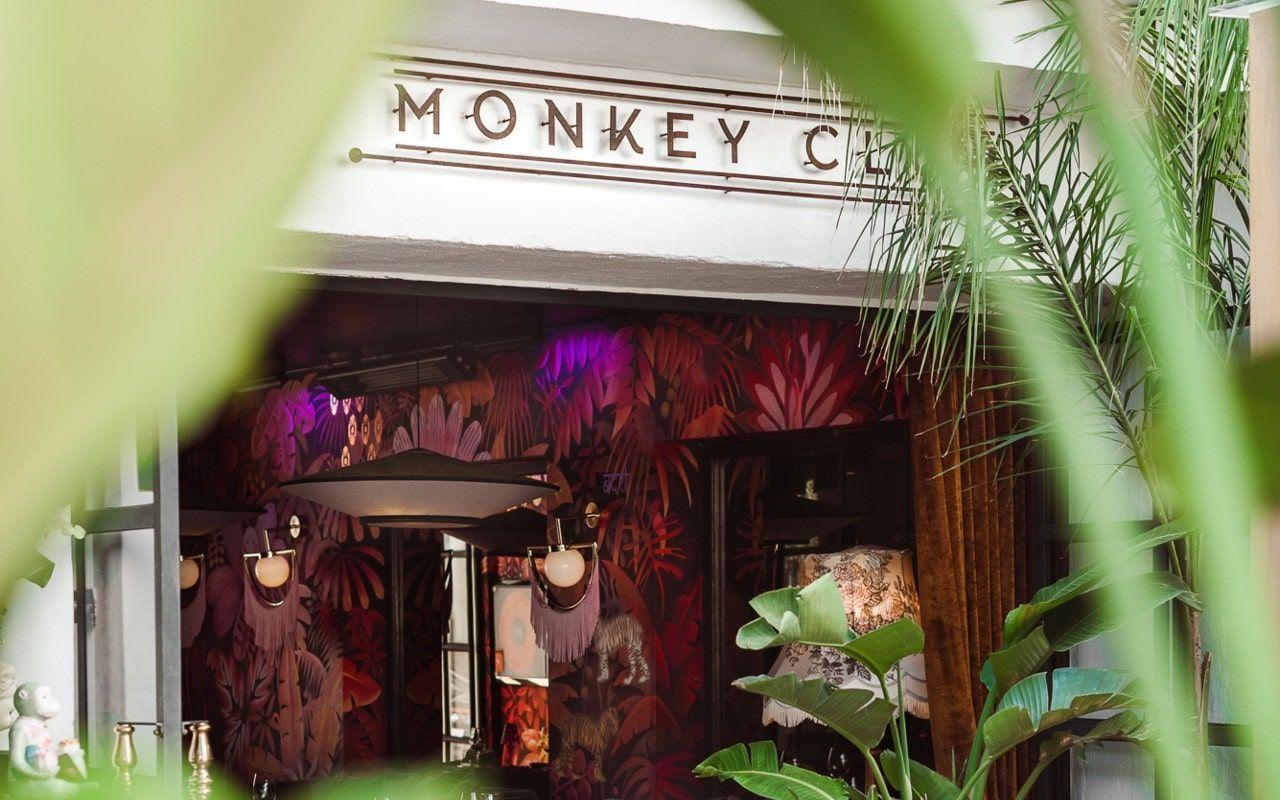 monkey-club-marbella